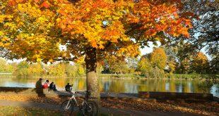 autumn 228150 1920 310x165 - 5 super snacks tijdens het mountainbiken