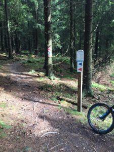 IMG 6180 225x300 - Bikepark & Trailpark Winterberg