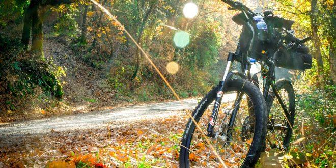 MTB Herfst 660x330 - Mountainbike vignet voor 2018 Utrechtse Heuvelrug is verkrijgbaar!