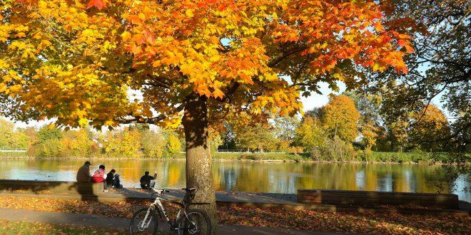 autumn 228150 1920 660x330 - 5 super snacks tijdens het mountainbiken