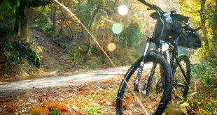 Mountainbike herfst